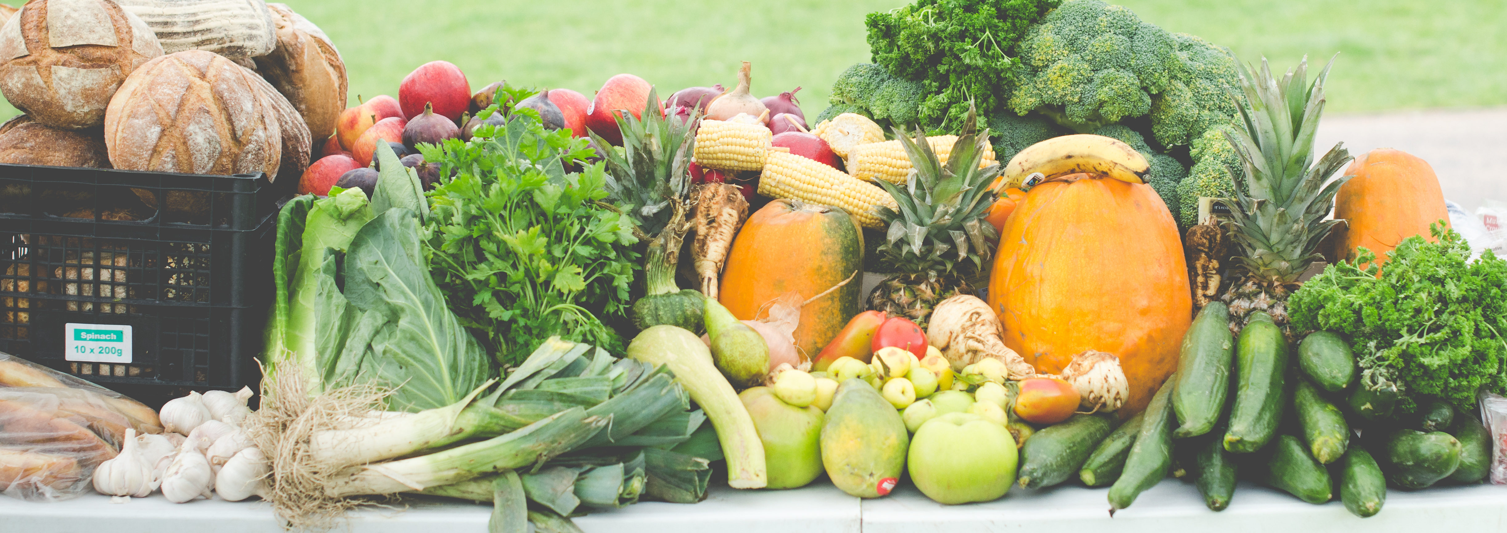Where to donate surplus food – Brighton and Hove Food Partnership