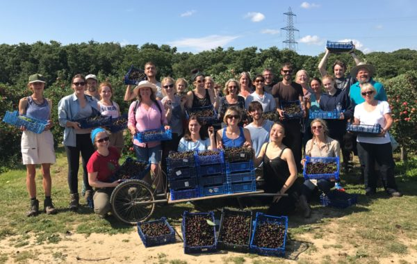 gleaning network group of volunteers