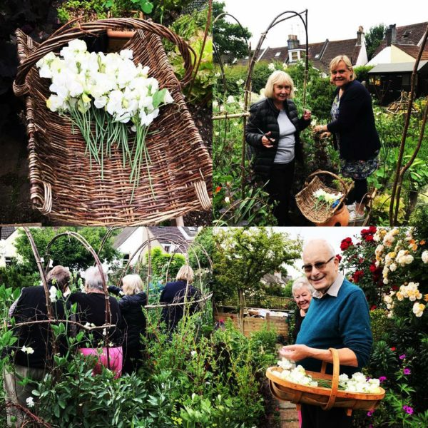dementia friendly gardening group