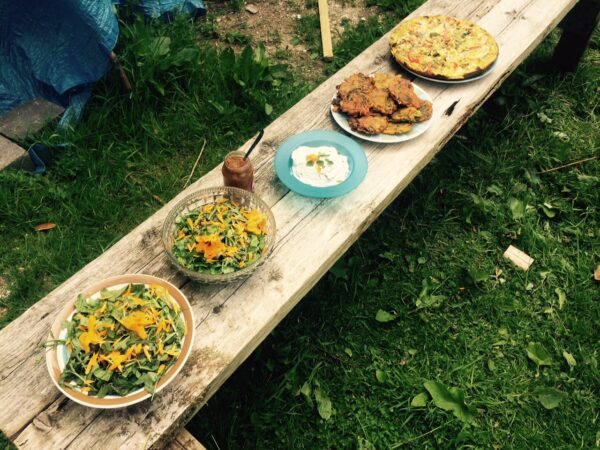 table full of food outdoors